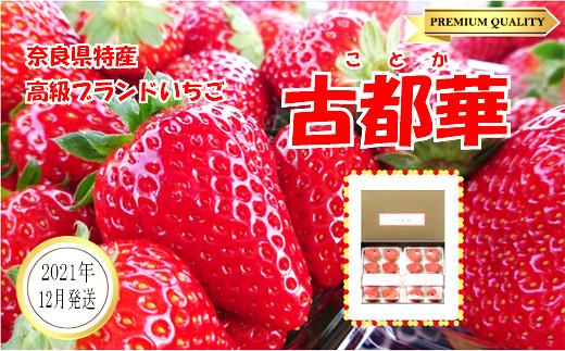 【数量限定】【先行予約】【12月発送】奈良県特産 高級ブランドいちご「古都華」