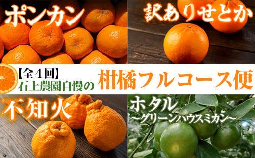 KU167 <先行予約受付中 2022年1月より発送予定>【定期便・全4回】石上農園から自慢の柑橘フルコース便 【石上農園】