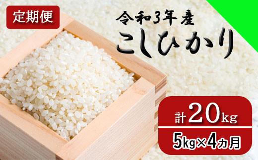 150259【令和3年産/お米定期便/4ヵ月】しまね川本 コシヒカリ 5kg (計20kg)