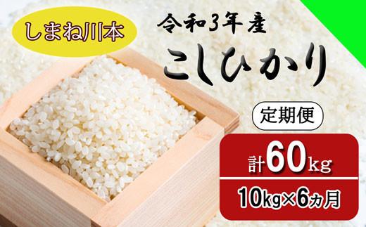 150265【令和3年産/お米定期便/6ヵ月】しまね川本 コシヒカリ 10kg (計60kg)