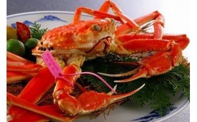 日本海産 タグ付きゆで松葉かに小サイズ2匹