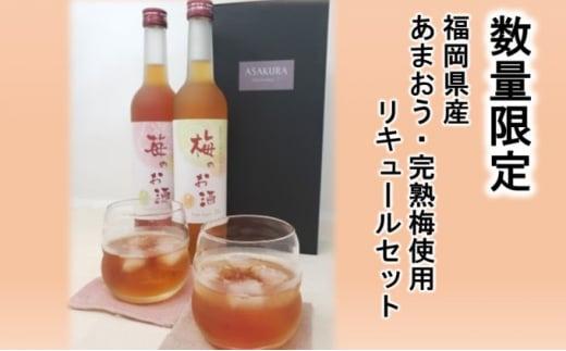 [№5656-1904]【数量限定】濃いめのお酒 飲み比べ 500ml×2本セット(苺のお酒/梅のお酒)
