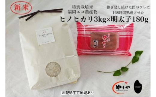 [№5656-1926]福岡のごはんセット『特別栽培米』農家直送 新米 ヒノヒカリ 3kg×やまや『うちのめんたい』180g【配送不可:離島】
