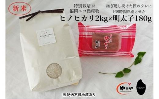 [№5656-1924]福岡のごはんセット『特別栽培米』農家直送 新米 ヒノヒカリ 2kg×やまや『うちのめんたい』180g【配送不可:離島】