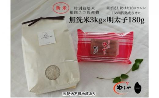 [№5656-1927]福岡のごはんセット『特別栽培米』農家直送 新米 ヒノヒカリ 無洗米 3kg×やまや『うちのめんたい』180g【配送不可:離島】