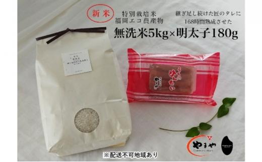 [№5656-1929]福岡のごはんセット『特別栽培米』農家直送 新米 ヒノヒカリ 無洗米 5kg×やまや『うちのめんたい』180g【配送不可:離島】