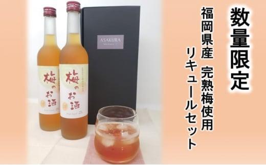 [№5656-1905]【数量限定】梅のお酒 500ml×2本セット