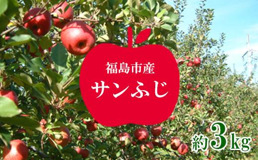 No.1224りんご サンふじ 約3kg