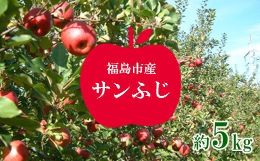No.1225りんご サンふじ 約5kg