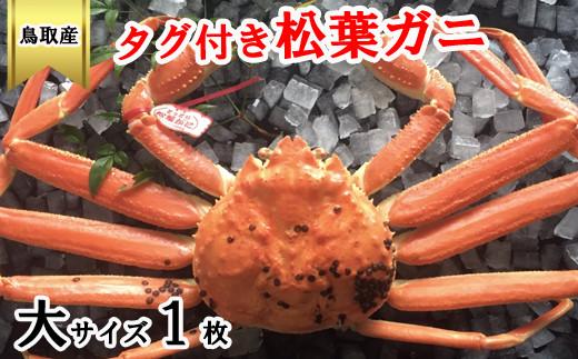 EY93:鳥取県産タグ付き松葉ガニ(大)冷蔵
