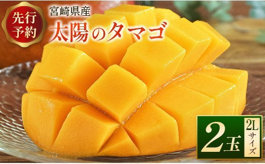 <先行予約>宮崎県産 「太陽のタマゴ」2Lサイズ 2玉 完熟マンゴー【C218】