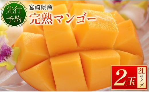 <先行予約>宮崎県産 完熟マンゴー2L 2玉 ※2022年4月中旬~8月下旬の期間内に出荷【B510】