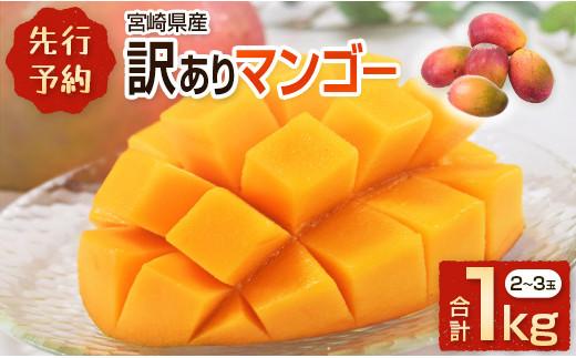 <先行予約>宮崎県産 訳ありマンゴー《家庭用》合計1kg【A178】