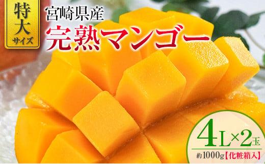 2022年4月中旬から順次出荷<特大サイズ>宮崎県産 完熟マンゴー 4L×2玉 化粧箱入り【D98】