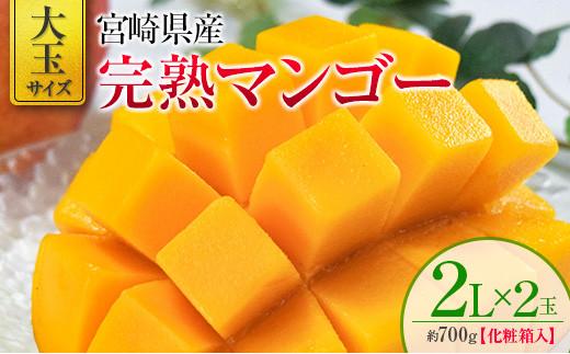 2022年4月中旬から順次出荷 宮崎県産 完熟マンゴー 2L×2玉 化粧箱入り【C334】