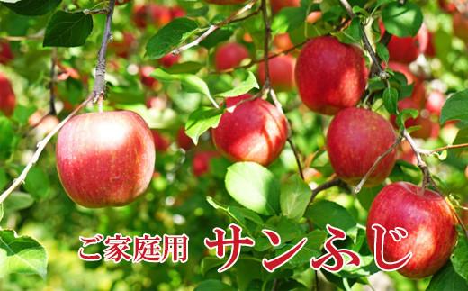 No.1221家庭用 りんご サンふじ 約3kg