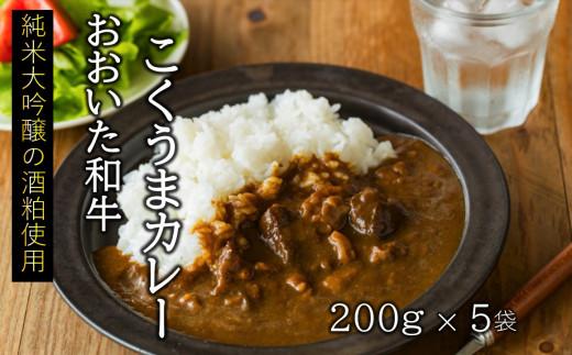 【おいしく食べて生産者を応援】おおいた和牛こくうまカレー 5袋(チャレンジ応援品)