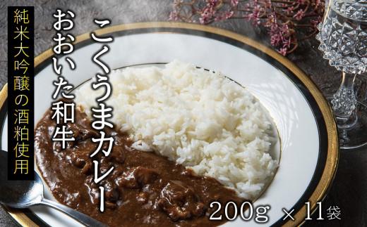 【おいしく食べて生産者を応援】おおいた和牛こくうまカレー 11袋(チャレンジ応援品)