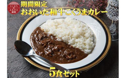 【チャレンジ応援品】数量限定 おおいた和牛こくうまカレー(5袋)