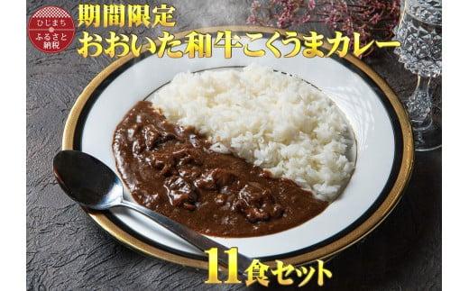 【チャレンジ応援品】数量限定 おおいた和牛こくうまカレー(11袋)