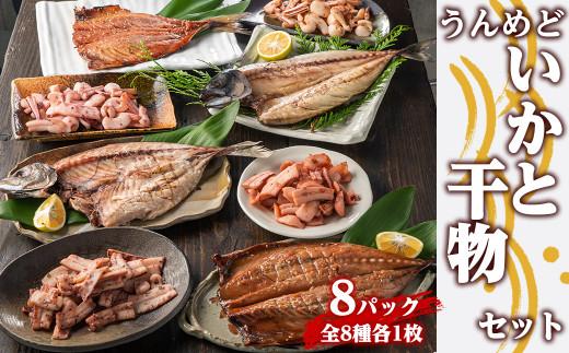 KU178 脂ののった魚介類を厳選!うんめどいかと干物セット8パック(8種×各1パック) 【内野水産】