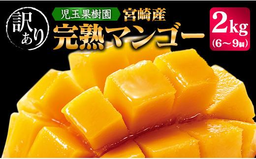 「訳あり」児玉農園 完熟マンゴー 約2kg【C300】