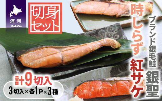 ブランド銀毛鮭「銀聖」・時しらず・紅鮭の切身セット(切身3種x3切入x1袋)[02-029]