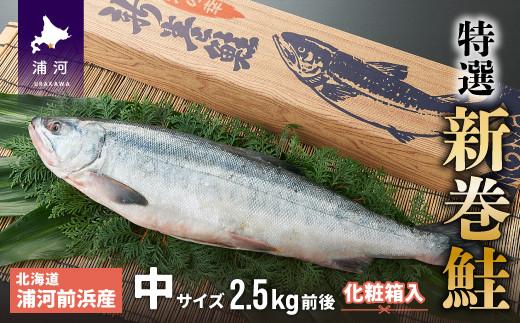 浦河前浜産 特選 新巻鮭(中2.5kg前後) 化粧箱入り [02-057]