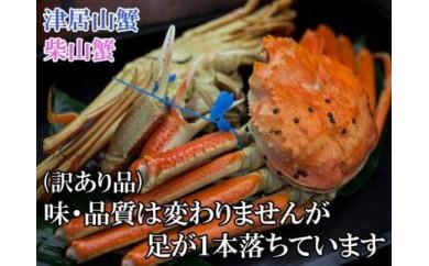 日本海産 茹で松葉蟹【訳あり】中大サイズmatubakani800 2匹入り