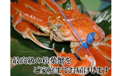 日本海産 ブランド蟹 茹で松葉蟹【厳選】特大サイズ matubakani1000