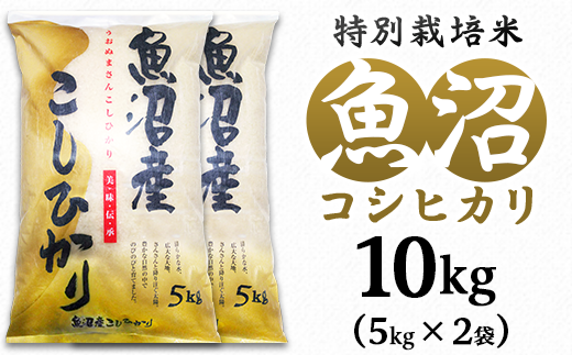 C2-101新潟県魚沼産特別栽培米コシヒカリ(長岡川口地域)10kg(5kg×2袋)