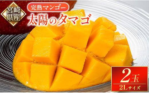 贈答品 宮崎県産完熟マンゴー「太陽のタマゴ」 2Lサイズ 2玉【C338】