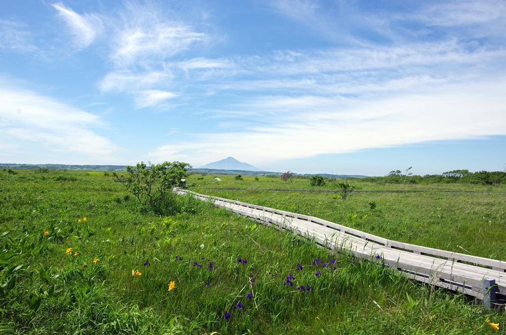 悠久の時を刻む大自然「サロベツ湿原」