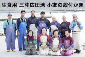 【生食用20個】三陸広田湾小友の殻付かき【期日指定可