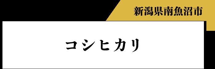新潟県南魚沼市 コシヒカリ