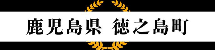 【鹿児島県 徳之島町】