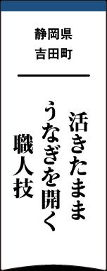 静岡県吉田町 活きたままうなぎを開く職人技