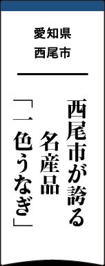 愛知県 西尾市 西尾市が誇る名産品「一色うなぎ」