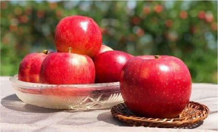 長野県 立科町 のりんご