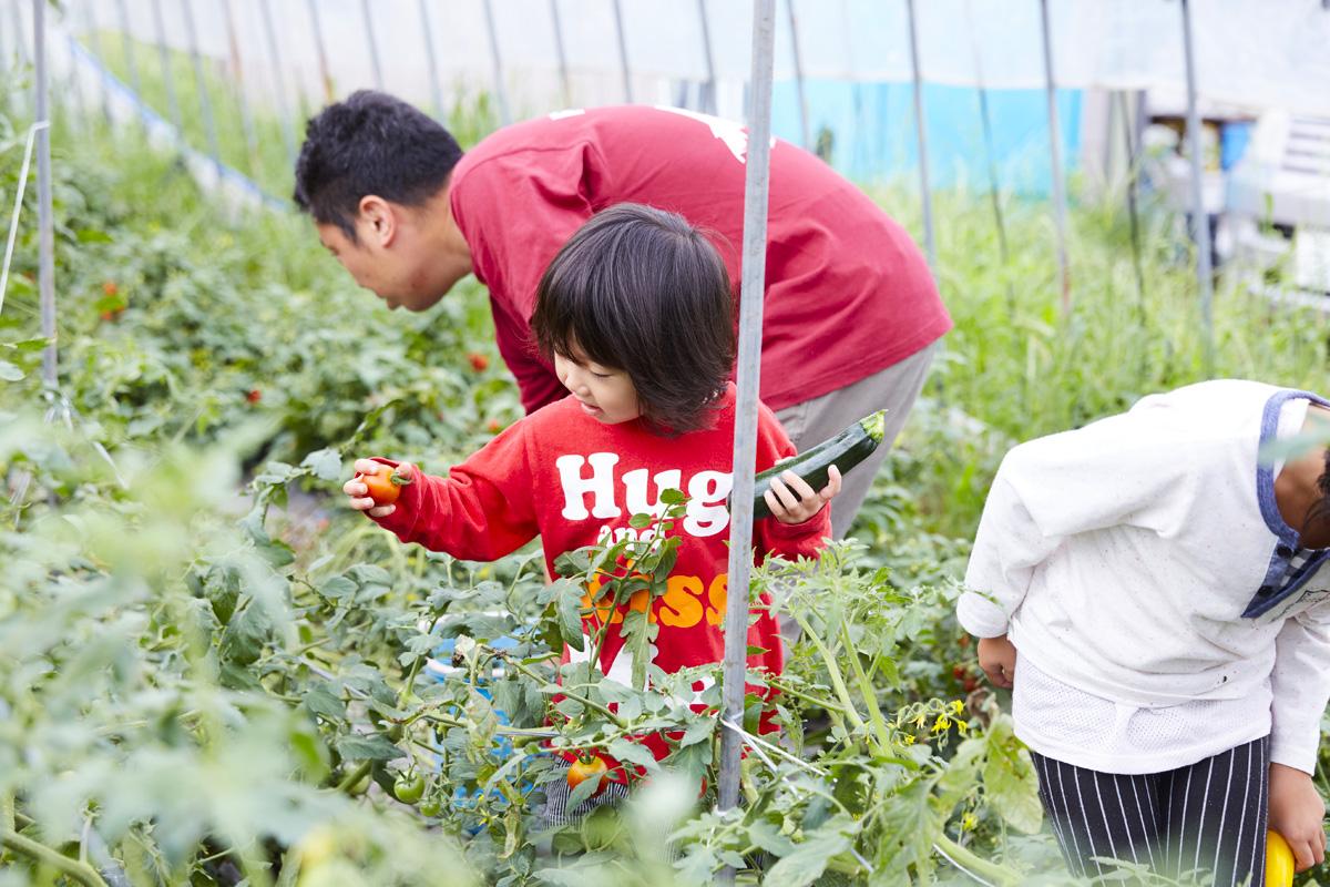 農業は日本の将来を担う未来型産業