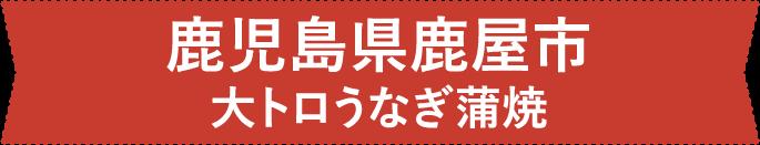 鹿児島県 鹿屋市 大トロうなぎ蒲焼
