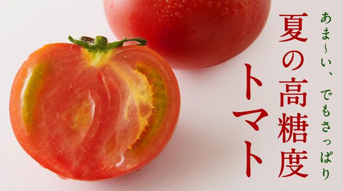 あま〜い、でもさっぱり夏の高糖度トマト