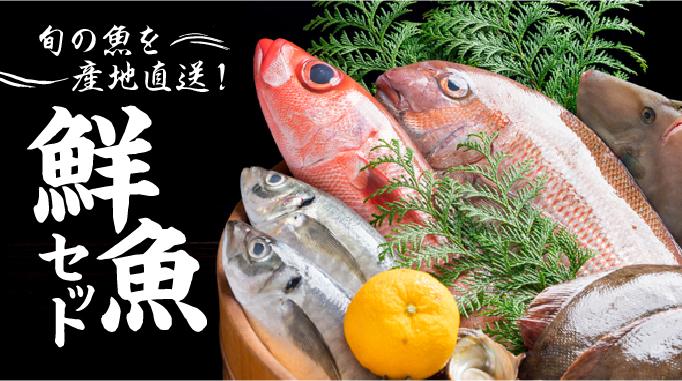 旬の魚を産地直送!鮮魚セット