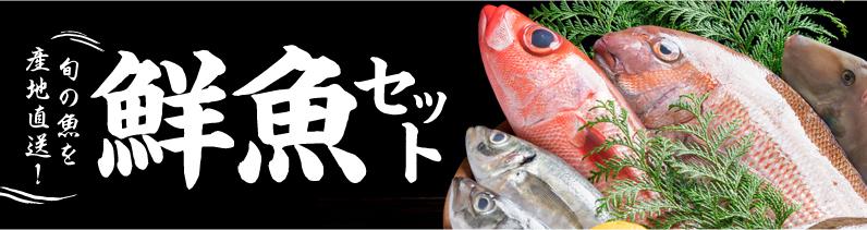 旬の魚を産地直送! 鮮魚セット