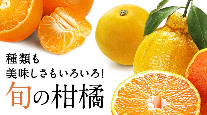 種類も美味しさもいろいろ 旬の柑橘