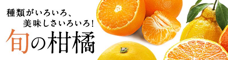 種類も美味しさもいろいろ!旬の柑橘