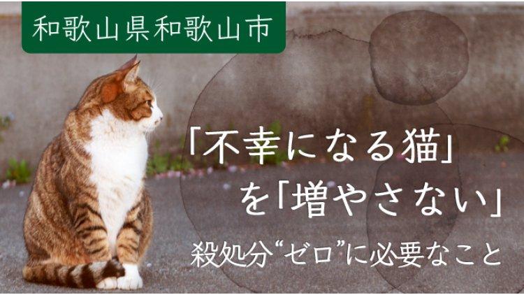 「不幸になる猫」を「増やさない」 殺処分「ゼロ」に必要なこと