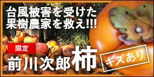 三重県多気町 前川次郎柿