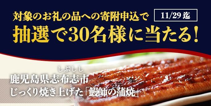 キャンペーン対象のお礼の品に寄附申込で鰻の蒲焼が当たる!