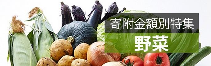 寄附金額別特集野菜